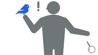あなたの青い鳥かもしれません